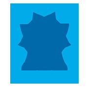 Логотип электрик 51